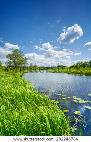 Spring summer sweet flag river landscape blue sky clouds countryside - stock photo
