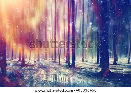 spring sun forest landscape in March - stock photo