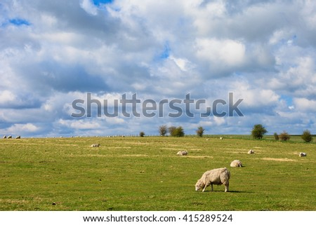 Spring sunny landscape of historic Stonehenge in England. Beautiful panorama. Sheeps eating grass - stock photo