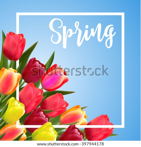 Spring text with tulip flower. illustration. Spring Flower Background Raster version - stock photo