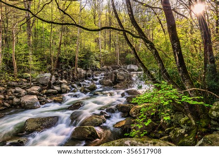 Spring time along the Little Pigeon River in the Great Smoky Mountains National Park. - stock photo
