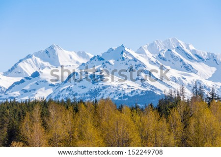 Spring time in Alaska.  Snow capped mountains and trees with spring growth - stock photo