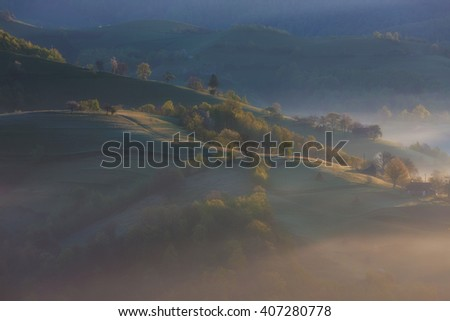 spring time landscape on wild transylvania hills. Holbav. Romania. Low key, dark background, spot lighting, and rich Old Masters