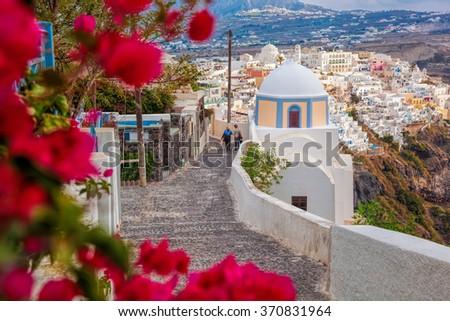 Spring time on Santorini island in Greece - stock photo