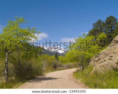 Spring trees framing a mountain road in the Colorado Rockies - stock photo