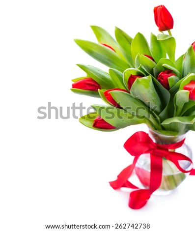 Spring Tulip Flowers bouquet in a vase over white. Mother's Day or Easter Tulips bunch decorated with red satin ribbon. Floral Border Design. Isolated on a white background - stock photo