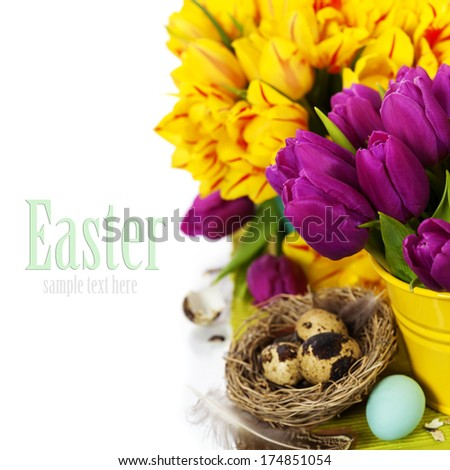 spring tulips with easter eggs on white background (with easy removable text) - stock photo
