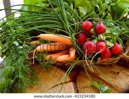 Spring vegetables in basket: radish, carrot and chives - stock photo