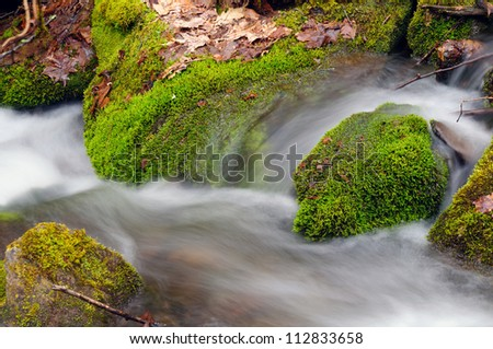 Spring vegetation and Wolf Creek in the Smoky Mountains - stock photo
