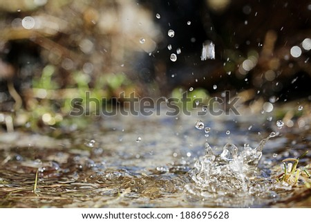 Spring water drops texture - stock photo