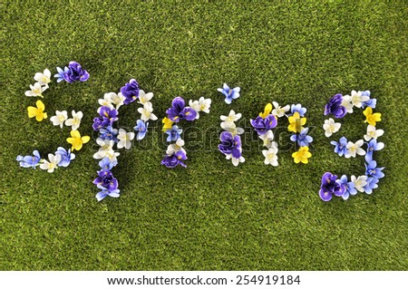 Spring written in flower display.  - stock photo