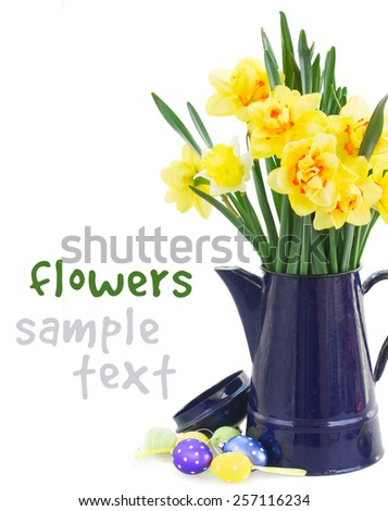 spring yellow narcissus in blue pot with easter eggs close up  isolated on white background - stock photo