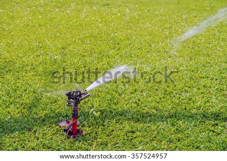 Springer water on grass field