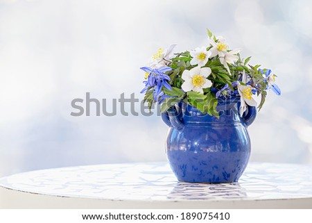 Springflowers in a pot on a table with bright background - stock photo