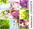 Springtime collage from nine photos of nature - stock photo