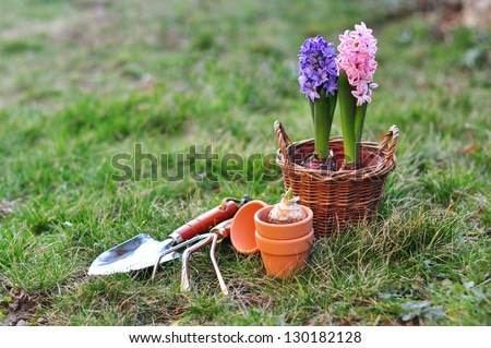 Springtime gardening - stock photo
