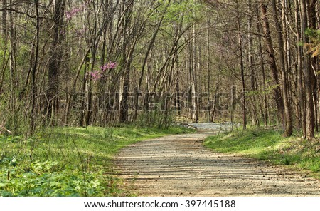 Springtime hike on Nature Trail in NC