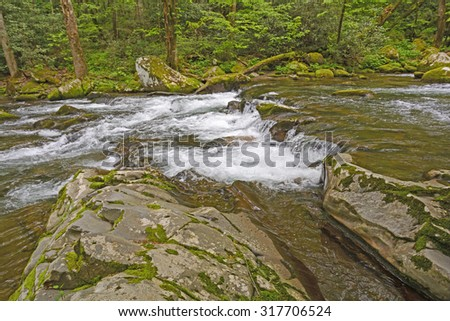 Springtime on a Big Creek in the Great Smoky Mountains in Tennessee - stock photo