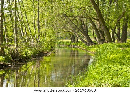 Springtime on the little River. (Dosse River seen in Wittstock, Germany.)