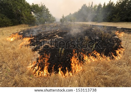 SPRINGVIEW, NE - JULY 22: Firefighters battle the Fairfield Creek Fire near Springview, Ne. High winds and dry conditions fueled the blaze which destroyed 17 homes. - stock photo