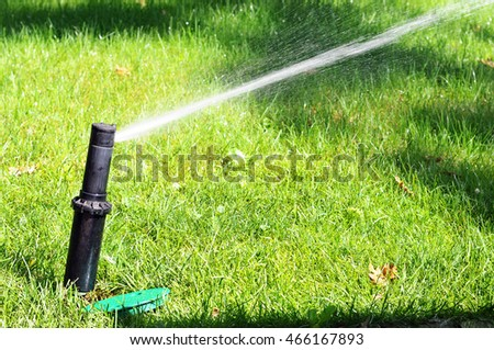 sprinkler head dispersing water on grass.
