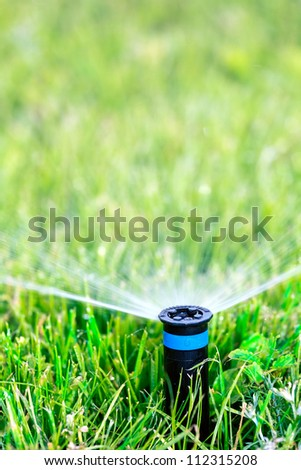 Sprinkler head spraying water on green lawn - stock photo