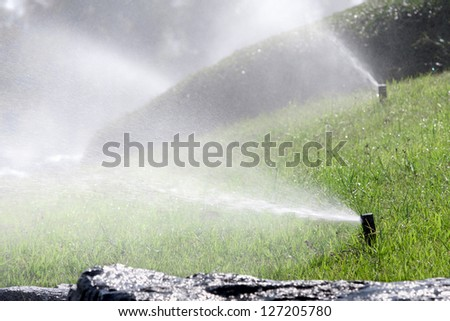 sprinkler head watering the bush and grass - stock photo