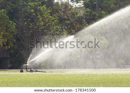 sprinkler head watering the grass