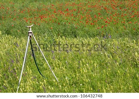 sprinkler in a poppy and other flowers field - stock photo