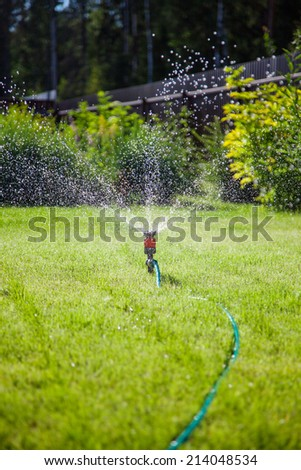Sprinkler in garden watering the lawn