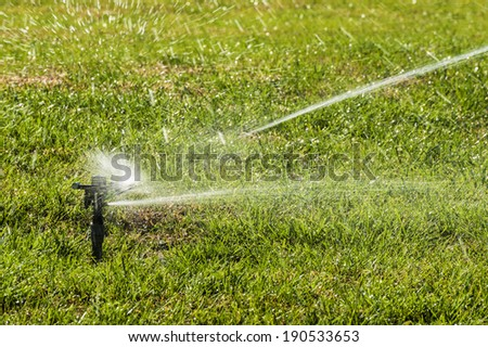 Sprinkler is work at the lawn