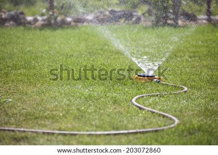 sprinkler spraying water on the grass - stock photo