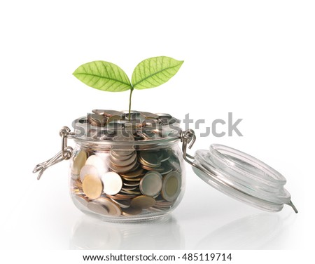 Sprout growing on a glass piggy bank