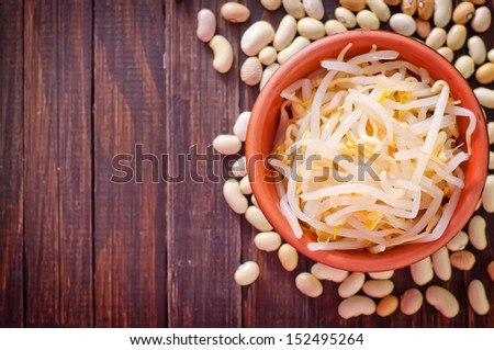 sprouts - stock photo