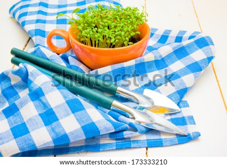 Sprouts of cress and garden shovels on checkered napkin  - stock photo