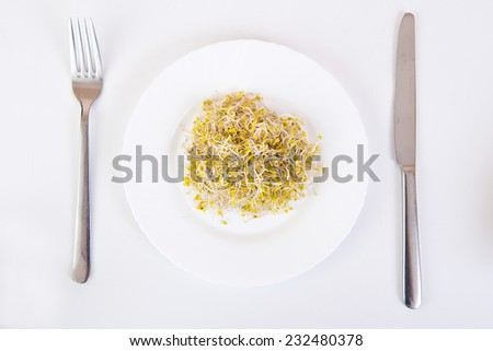 sprouts on a plate and cutlery on white background - stock photo