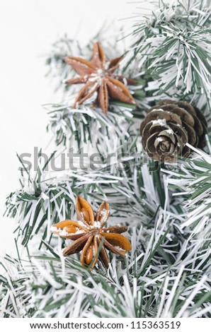 spruce branches, pine cones and star anise