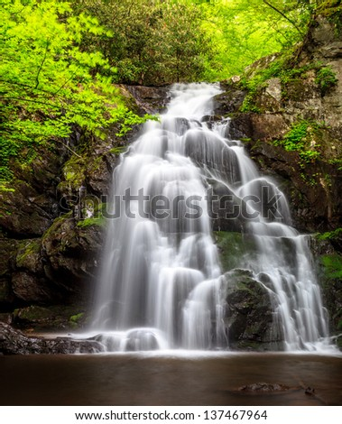 Spruce flats waterfalls, lush green, smokey mountains national park - stock photo