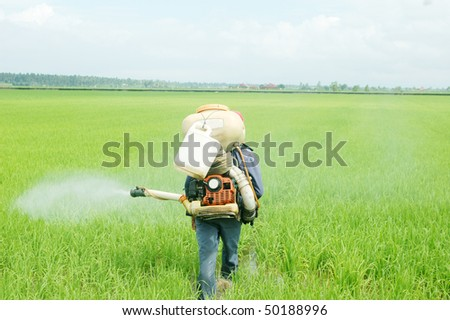 Sprying pesticides among the crop - stock photo