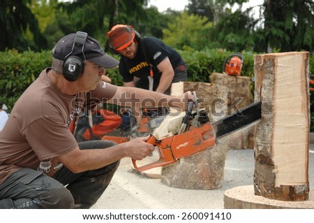SQUAMISH, BC, CANADA - AUGUST 2, 2013: Loggers demonstrate their chainsaw skills during Squamish Days Loggers Festival in Squamish, BC, Canada, on August 2, 2013. - stock photo