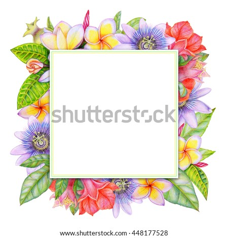 Square frame of Tropical Flowers. Frangipani (Plumeria), Pomegranate, Passiflora drawn by hand with colored pencils. Place for text. Can be used as a Invitation, Save the date, RSVP, Greeting card. - stock photo