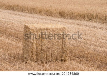Square haystack on ripe wheat field background - stock photo