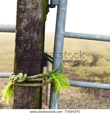 Square image of iron gate, closed with a green rope