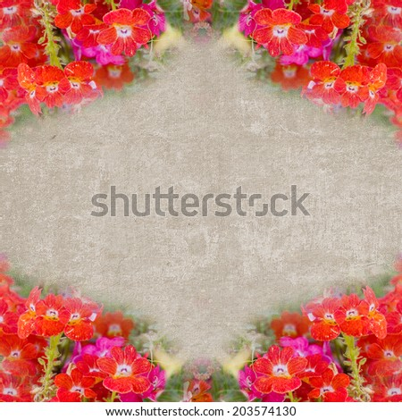 Square vintage textured frame with red meadow flowers - stock photo