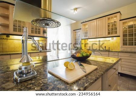 Squeezer on granitic countertop in modern kitchen - stock photo