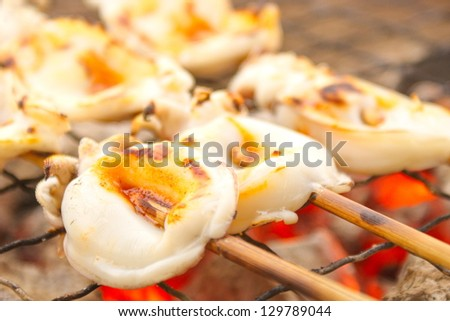 Squid burn - stock photo