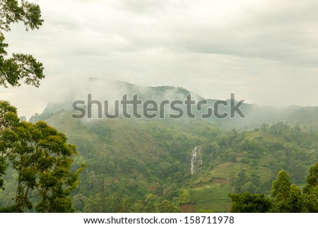 Sri Lanka. Fog in the mountains of Nuwara Eliya. - stock photo
