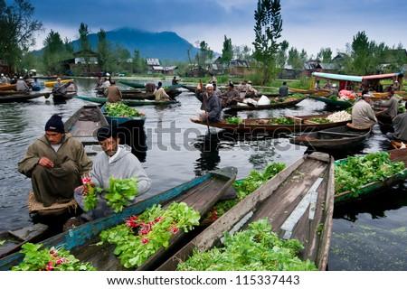 SRINAGARINDIA APRIL 14 Lifestyle Dal Lake Kashmiri Stock ...