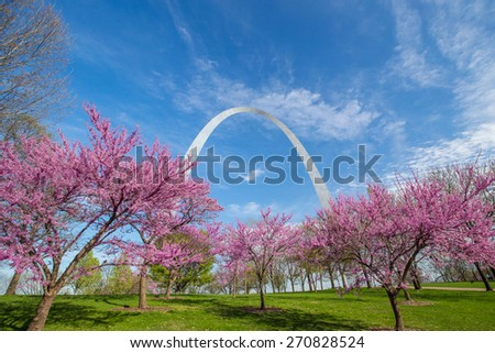 St. Louis Gateway Arch in Missouri with pink flower and blue sky - stock photo