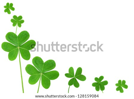 St. Patrick's clover border isolated on white background - stock photo